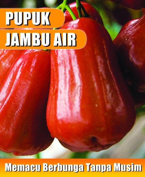 sticker-pupuk-jambu-air